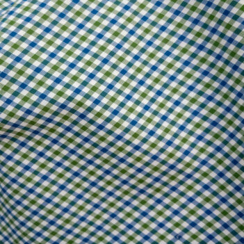 multy Gingham dress shirt